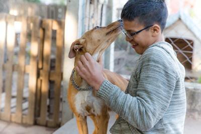Hund slikker gutt i ansiktet på hundeterapi i Argentina