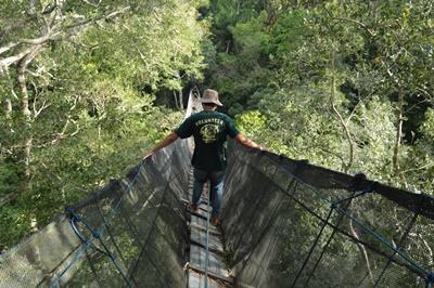 En frivillig ute på hengebroen over regnskogen i Amazonas
