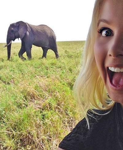 Frivillig tar selfie med elefant på safari i Tanzania