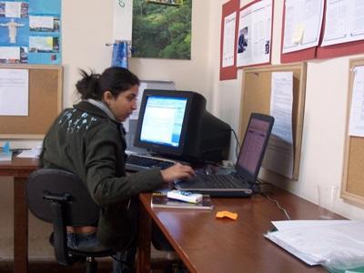 Journalistikkfrivillig gjør kontorarbeid under sitt internship i Bolivia