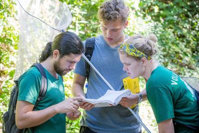 Frivillige bruker en bok til å identifisere sommerfugler i nasjonalpark i Costa Rica