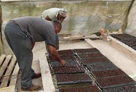 Frivillig Landbruk & Lokalsamfunn