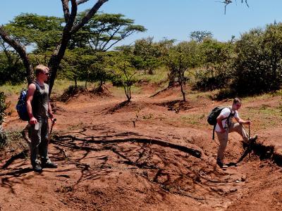 Projects Abroad-frivillige deltar i praktisk arbeid på Afrikansk Savannebevaring i Kenya