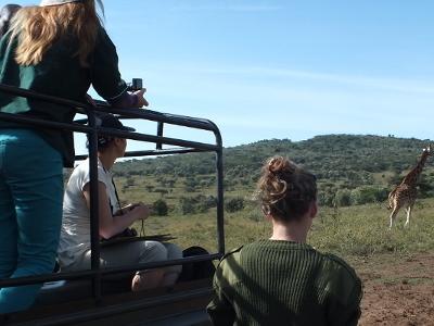 Projects Abroad-frivillige er på utkikk etter dyr på Afrikansk Savannebevaring i Kenya