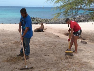 Frivillige på natur- og miljøprosjektet på Galápagos rydder opp på en strand