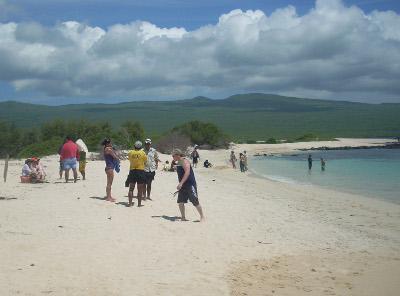 Frivillige på strandopprydning på natur- og miljøprosjektet på Galápagos, Ecuador
