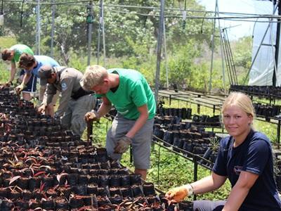 En gruppe med frivillige som driver skogplanting i Nasjonalpark på Galápagos