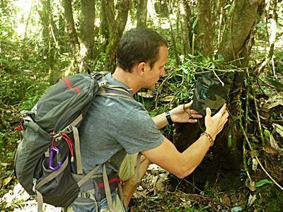 Frivillig undersøker trær på natur- og miljøprosjektet i Nepal