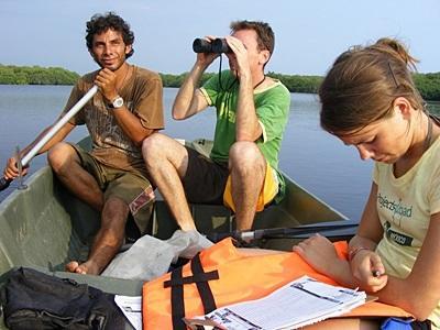 Frivillige på kystbevaringsprosjektet i Mexico observerer dyrelivet fra båt