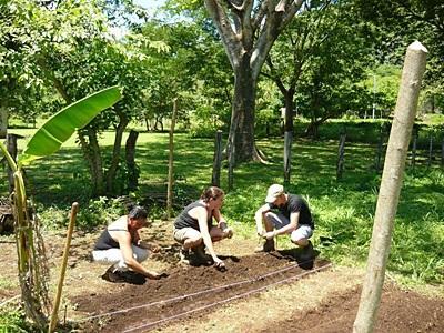 Frivillige gjør bevaringsarbeid i skogen i Costa Rica