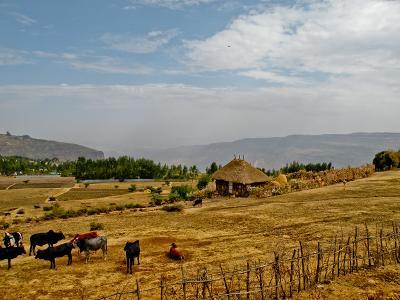 Utsikt over en gård i Etiopia