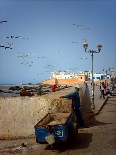 Utsikt over en gate og havet i Togo