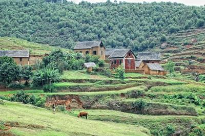 Den naturskjønne og grønne landsbygda på Madagaskar