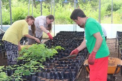 Frivillige som planter i et drivhus i Ecuador