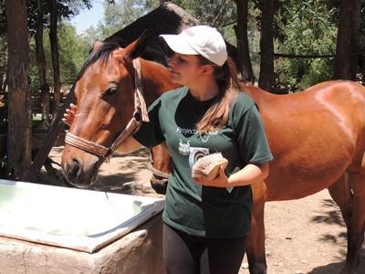 En Hesteterapi og Lokalsamfunn-frivillig og en av hestene på senteret i Cochabamba, Bolivia