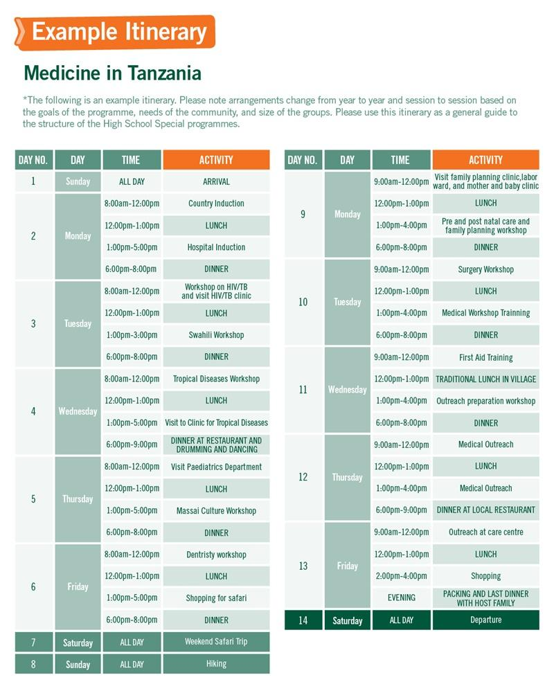 High School Special sample schedule for Medicine in Tanzania 2 weeks