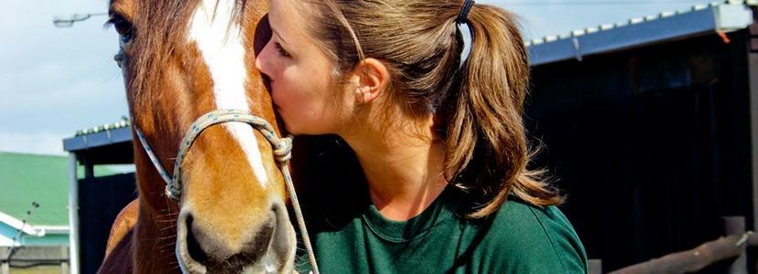 Ungdomsfrivillig med dyr på et Dyrestellprosjekt med Projects Abroad