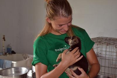 En frivillig holder en hundevalp på dyrestellprosjektet i Belize.
