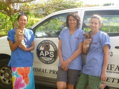 Frivillige holder valper foran bilen som brukes når de drar på oppsøkende arbeid for sterilisering av hunder og katter