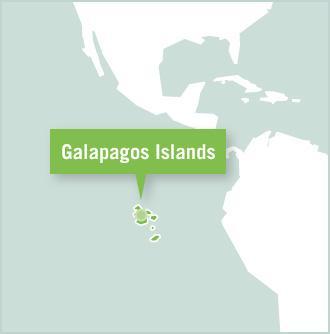 Kart over destinasjonen for frivillige på Galápagosøyene i Ecuador, Sør-Amerika