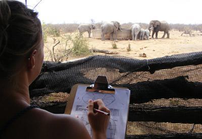 Frivillig som registrerer funn på savannen på natur- og miljøprosjekt i Afrika