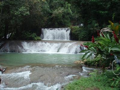 Foss i nærheten av Projects Abroads plassering for frivillig arbeid på Jamaica
