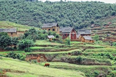 Landsby blant trær og sletter på Madagaskar
