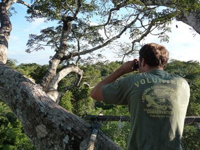 Frivillig som observerer fugler på natur- og miljøprosjektet i Peru