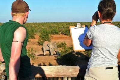 Frivillige-identifiserer-elefanter-ved-vannhullet-i-Sør-Afrika