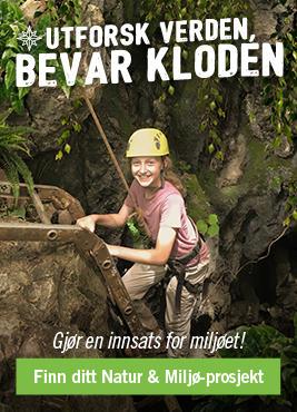 Frivillig Arbeid med Natur & Miljøbevaring