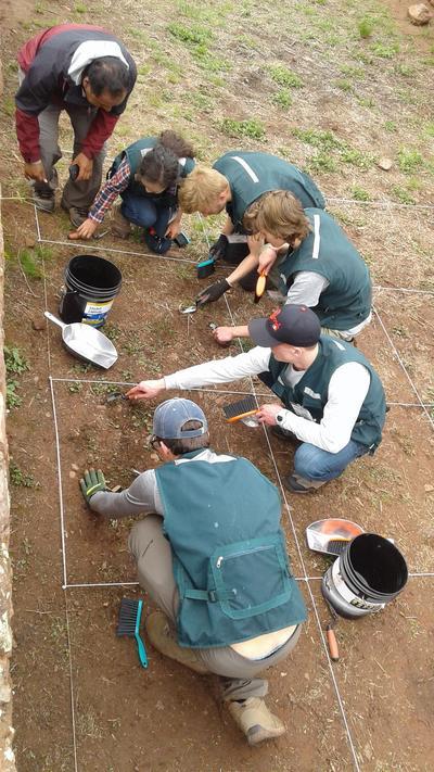 En gruppe frivillige på et utgravingsfelt i Peru